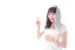 紹介をするドレス姿の花嫁の写真素材 [FYI04714768]