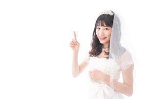 紹介をするドレス姿の花嫁の写真素材 [FYI04714770]