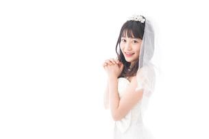 花嫁ポートレートの写真素材 [FYI04714788]