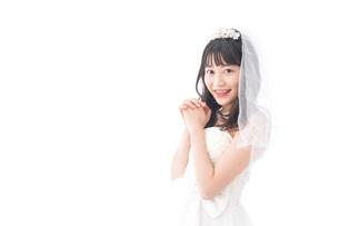 花嫁ポートレートの写真素材 [FYI04714789]