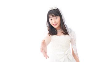 握手をするドレス姿の花嫁の写真素材 [FYI04714794]