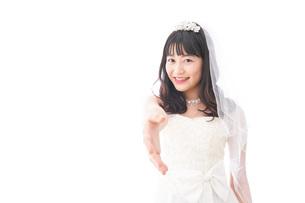 握手をするドレス姿の花嫁の写真素材 [FYI04714795]