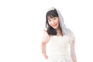 握手をするドレス姿の花嫁の写真素材 [FYI04714796]