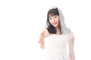 握手をするドレス姿の花嫁の写真素材 [FYI04714801]