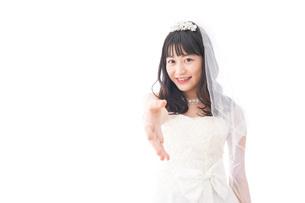 握手をするドレス姿の花嫁の写真素材 [FYI04714802]