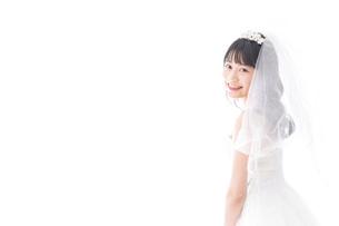 花嫁ポートレートの写真素材 [FYI04714811]