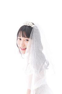 花嫁ポートレートの写真素材 [FYI04714819]