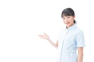 指をさす若い看護師の写真素材 [FYI04714842]