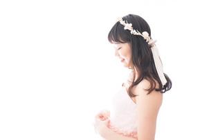 ドレスを着た若い花嫁の写真素材 [FYI04714960]