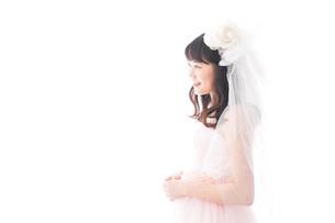 ドレスを着た若い花嫁の写真素材 [FYI04714965]