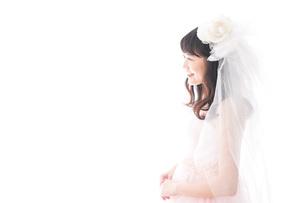ドレスを着た若い花嫁の写真素材 [FYI04714966]