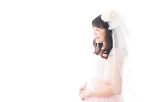 ドレスを着た若い花嫁の写真素材 [FYI04714967]