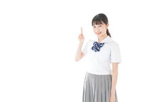 案内をする笑顔の女子学生の写真素材 [FYI04715243]