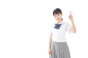 案内をする笑顔の女子学生の写真素材 [FYI04715250]
