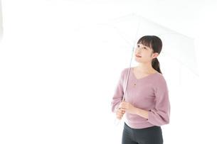 傘をさす若い女性の写真素材 [FYI04715395]