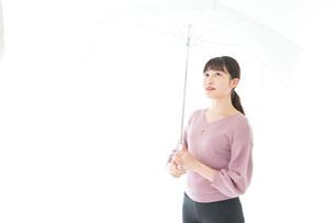 傘をさす若い女性の写真素材 [FYI04715406]