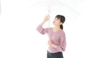 傘をさす若い女性の写真素材 [FYI04715408]