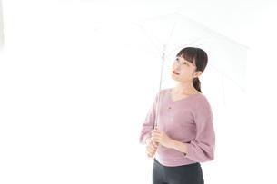 傘をさす若い女性の写真素材 [FYI04715412]