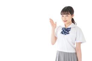 案内をする笑顔の女子学生の写真素材 [FYI04715734]