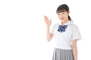案内をする笑顔の女子学生の写真素材 [FYI04715740]