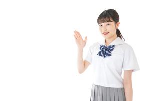 案内をする笑顔の女子学生の写真素材 [FYI04715746]