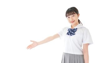 案内をする笑顔の女子学生の写真素材 [FYI04715748]