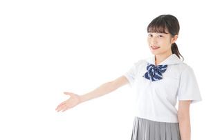 案内をする笑顔の女子学生の写真素材 [FYI04715749]