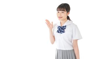 案内をする笑顔の女子学生の写真素材 [FYI04715751]