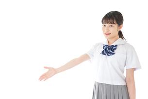 案内をする笑顔の女子学生の写真素材 [FYI04715757]