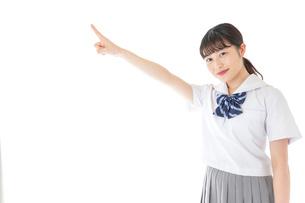 上を指差す制服を着た女子学生の写真素材 [FYI04715798]