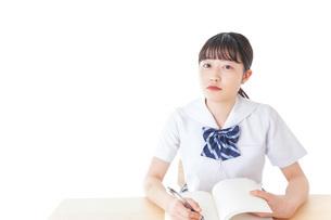 授業を受ける若い女子学生の写真素材 [FYI04715846]