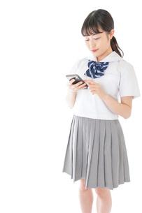 スマートフォンを使う若い女子学生の写真素材 [FYI04715879]