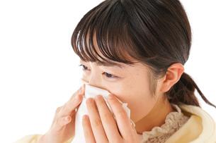 花粉症・アレルギーで苦しむ若い女性の写真素材 [FYI04716184]
