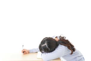 勉強をサボる若い女子学生の写真素材 [FYI04716603]