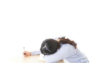 勉強をサボる若い女子学生の写真素材 [FYI04716605]