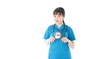 妊婦のエコー画像と笑顔の若いナースの写真素材 [FYI04716784]