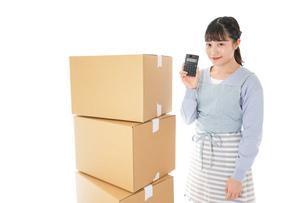 引っ越しをする若い女性の写真素材 [FYI04717292]