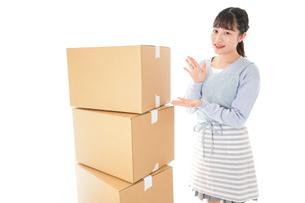 引っ越しをする若い女性の写真素材 [FYI04717293]