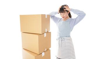 引っ越しをする若い女性の写真素材 [FYI04717294]