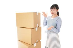 引っ越しをする若い女性の写真素材 [FYI04717297]