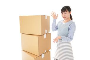 引っ越しをする若い女性の写真素材 [FYI04717298]