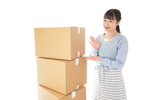 引っ越しをする若い女性の写真素材 [FYI04717300]