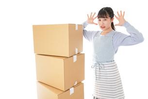 引っ越しをする若い女性の写真素材 [FYI04717303]