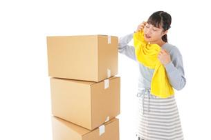 引っ越しをする若い女性の写真素材 [FYI04717305]
