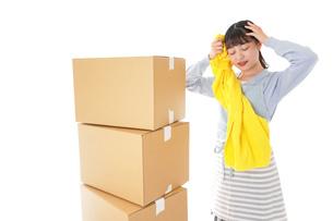 引っ越しをする若い女性の写真素材 [FYI04717306]