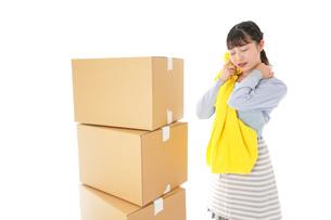 引っ越しをする若い女性の写真素材 [FYI04717308]