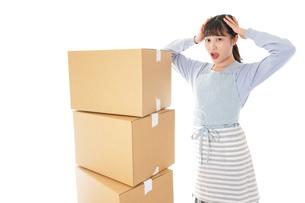 引っ越しをする若い女性の写真素材 [FYI04717309]