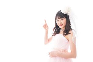 ピンクのドレスを着た花嫁の写真素材 [FYI04718323]