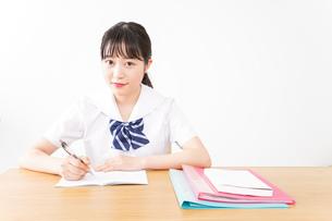 勉強をする学生の写真素材 [FYI04718692]