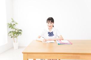 勉強をする学生の写真素材 [FYI04718697]
